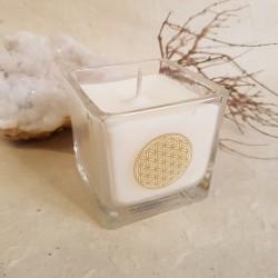 Bougie parfumée Cire de Colza -...